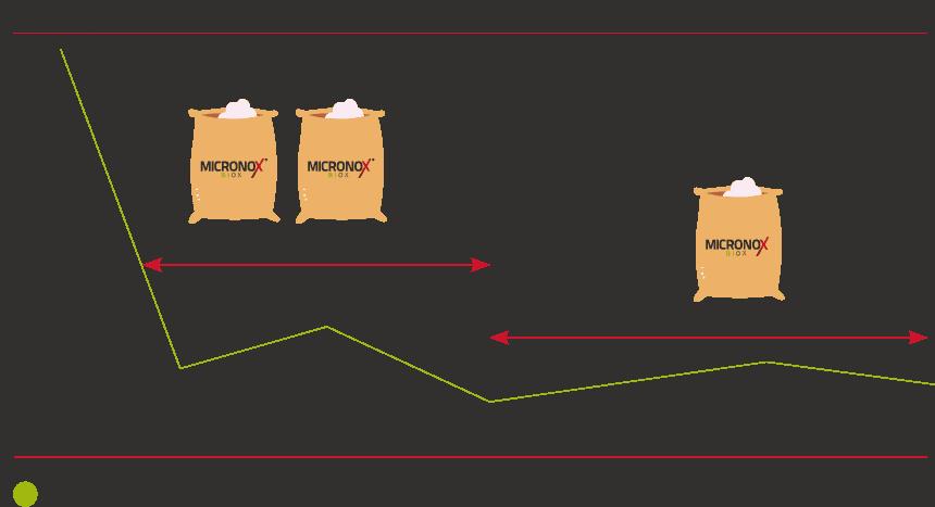 simulation-bags